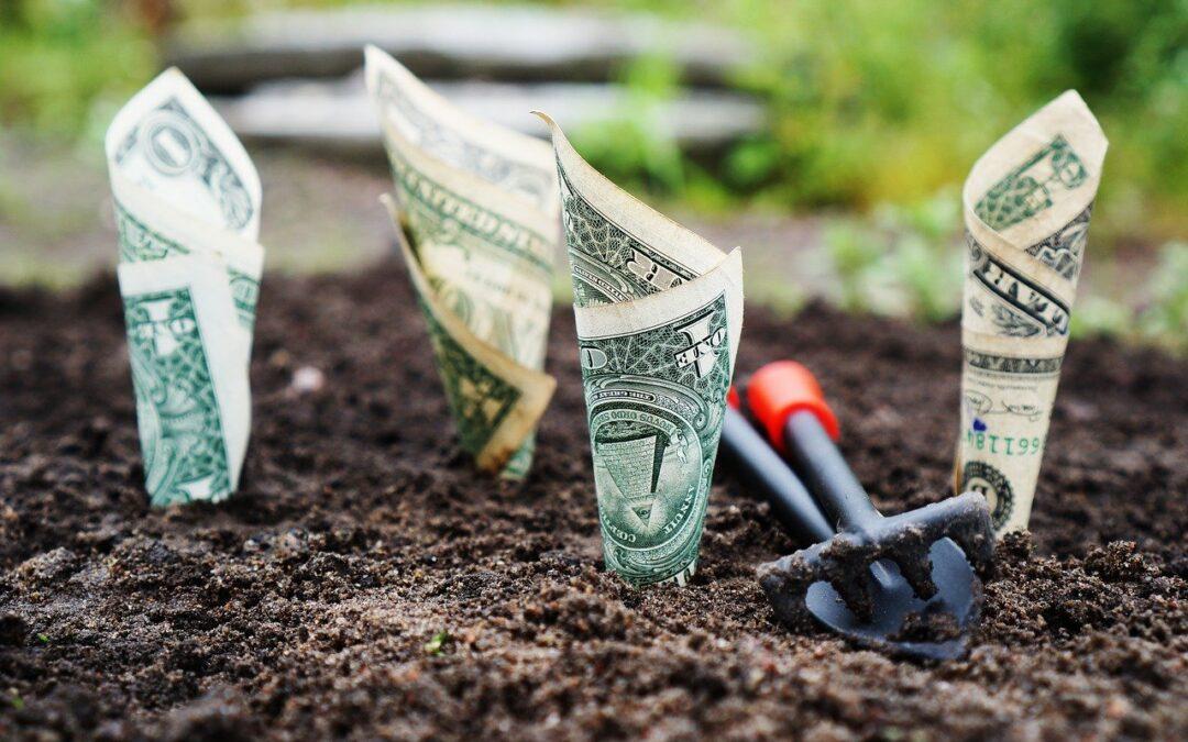 Økonomisk overblikk gir økonomisk overskudd